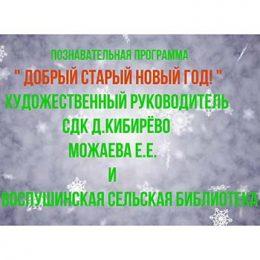 Познавательная программа «Добрый Старый Новый год»