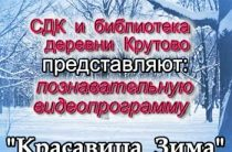 Познавательная видеопрограмма «Красавица Зима»