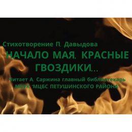 Стихотворение Петра Давыдова «Начало мая, красные гвоздики…»