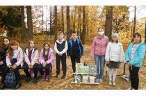 Мероприятие «Осень в стихах русских поэтов». Пекшинская сельская библиотека